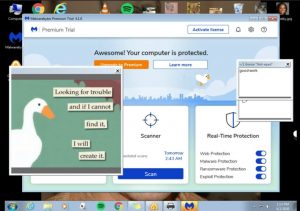 goose desktop vs scammer